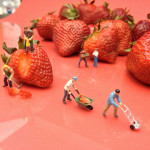 tiny men labor to disassemble a strawberry